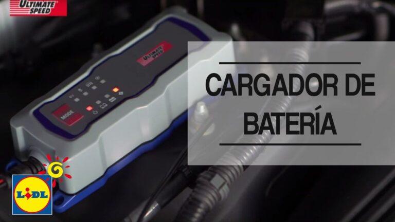 El Mejor Cargador bateria coche Cargador de batería coche