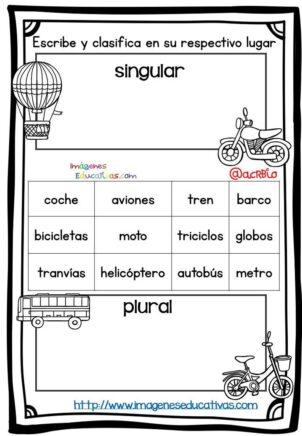 Un Singular Organizador coche infantil